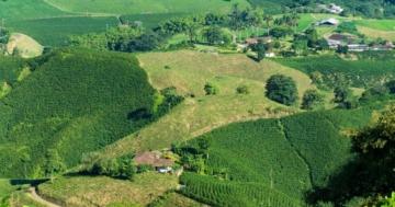 Kaffee-Anbaugebiete